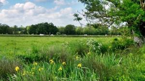 Prairies de la ferme du Moulinet